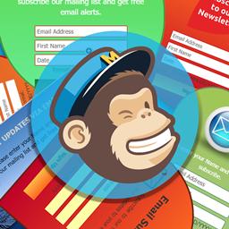 Shopify Mailchimp app by Solvercircle